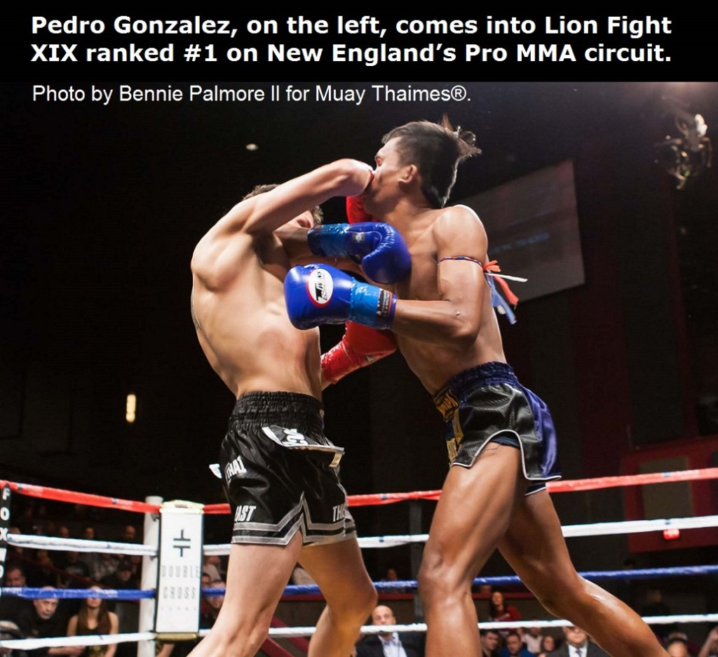 Pedro Gonzalez comes into Lion Fight XIX ranked #1 on New England's Pro MMA circuit