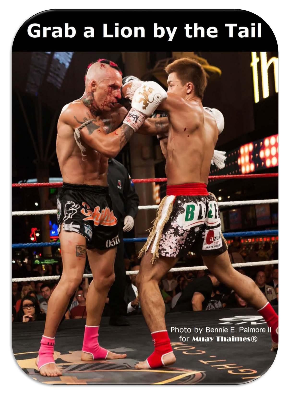 Lion Fight 21 Title Photo