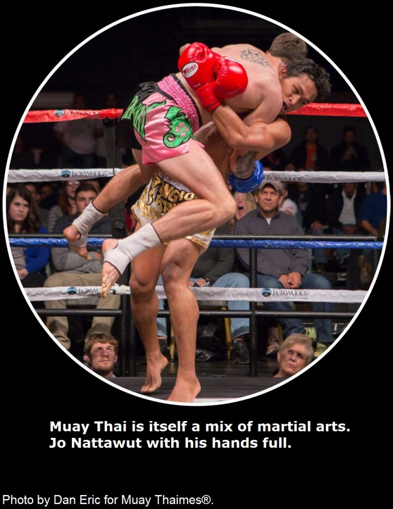 Muay Thai is itself a mix of martial arts