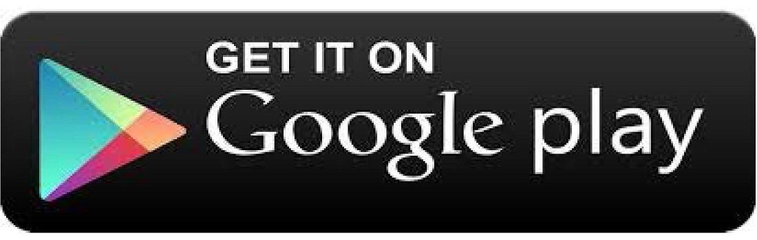 Googleplay App Icon